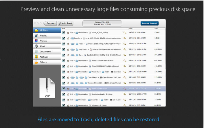 Large File Cleaner