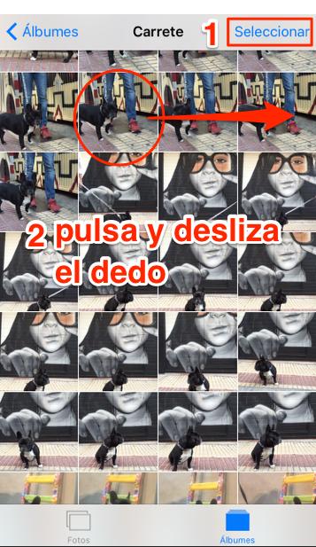 selección_fotos_iOS_9_1