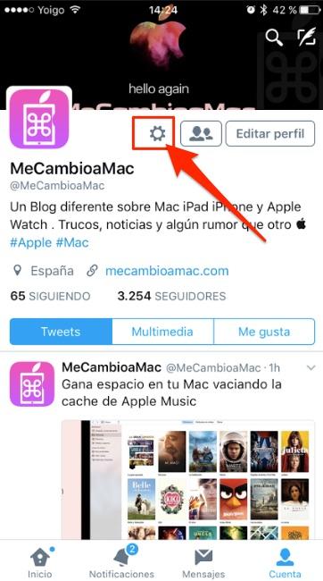 como_evitar_que_se_reproduzcan_automaticamente_los_videos_de_twitter_en_tu_ipad_o_iphone_1