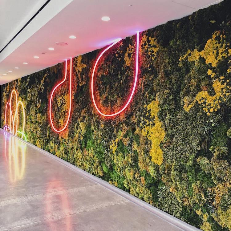 Interior del Wolfe Campus de Apple