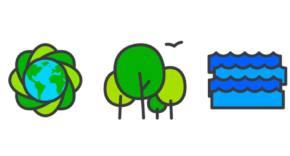 Reto del Día Mundial del Medio Ambiente 2020
